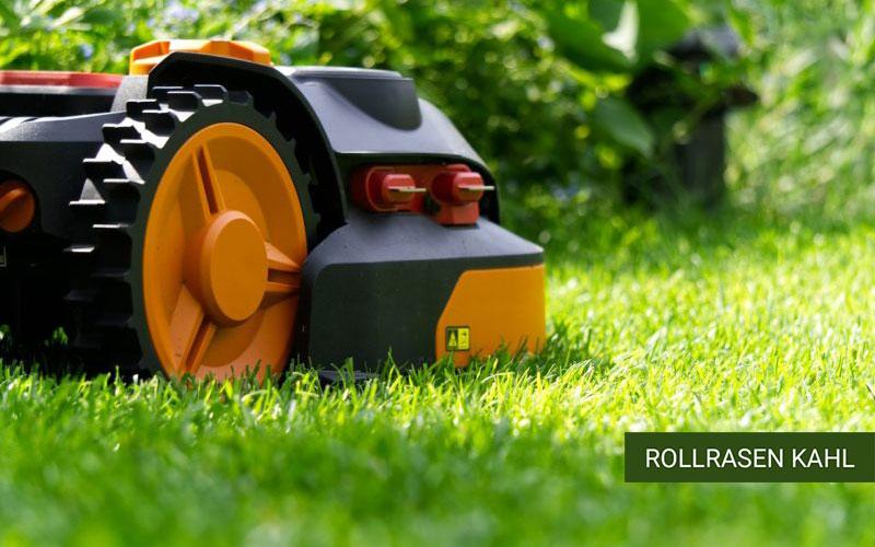 Roborasen für den Mähroboter, Rollrasen, feiner Rasen